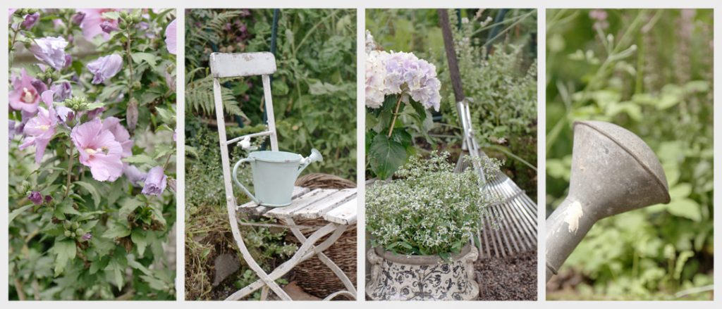 Willkommen auf dem Gartenblog von Gundi's Garten