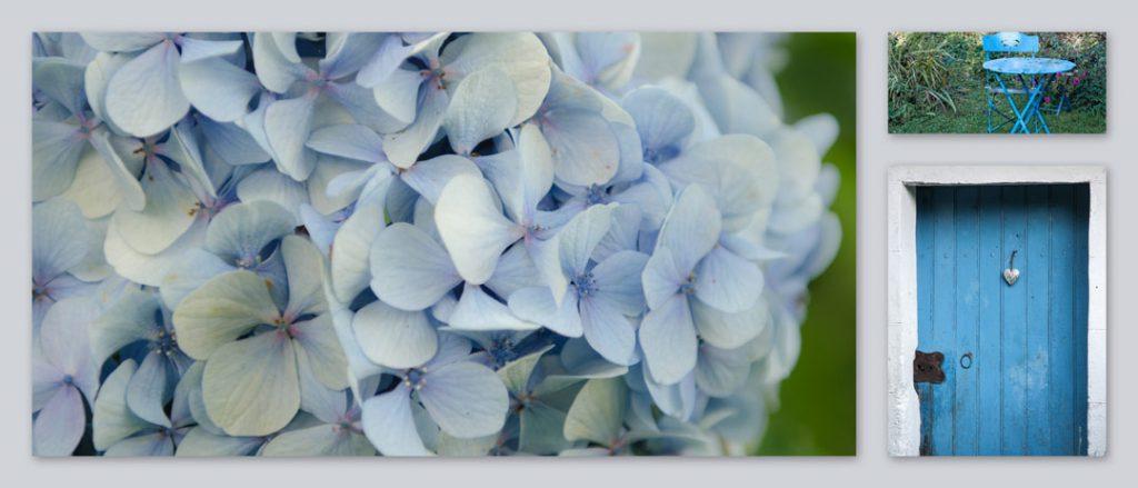Blaue Hortensie Gartengedicht Rilke