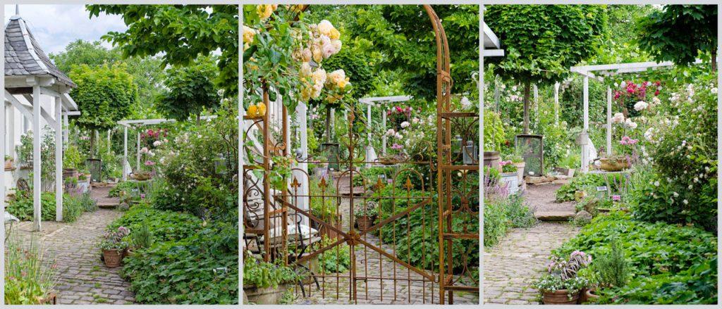 Offener-Garten-Pfalz