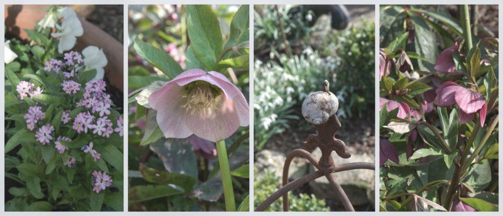 Impressionen vom Frühling im Rosengarten