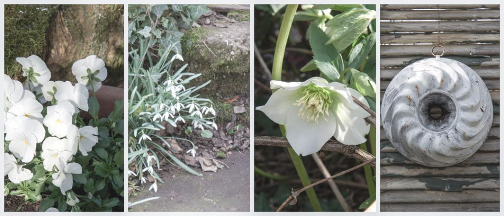 Frühlingsanfang in der Pfalz