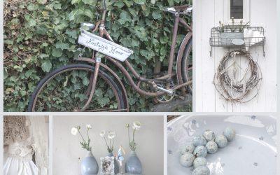 hallo und herzlich willkommen auf dem gartenblog von gundi 39 s garden. Black Bedroom Furniture Sets. Home Design Ideas