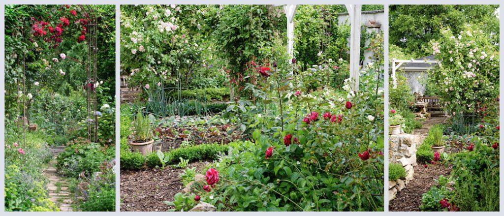 Landhausgarten mit Gemüsegarten und Rosen