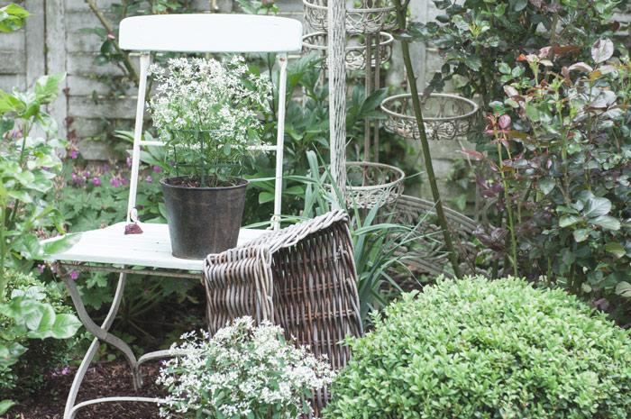 Gartengestaltung mit Buchbaum
