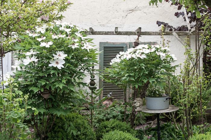 Antike Gartendekoration im Shabby Chic