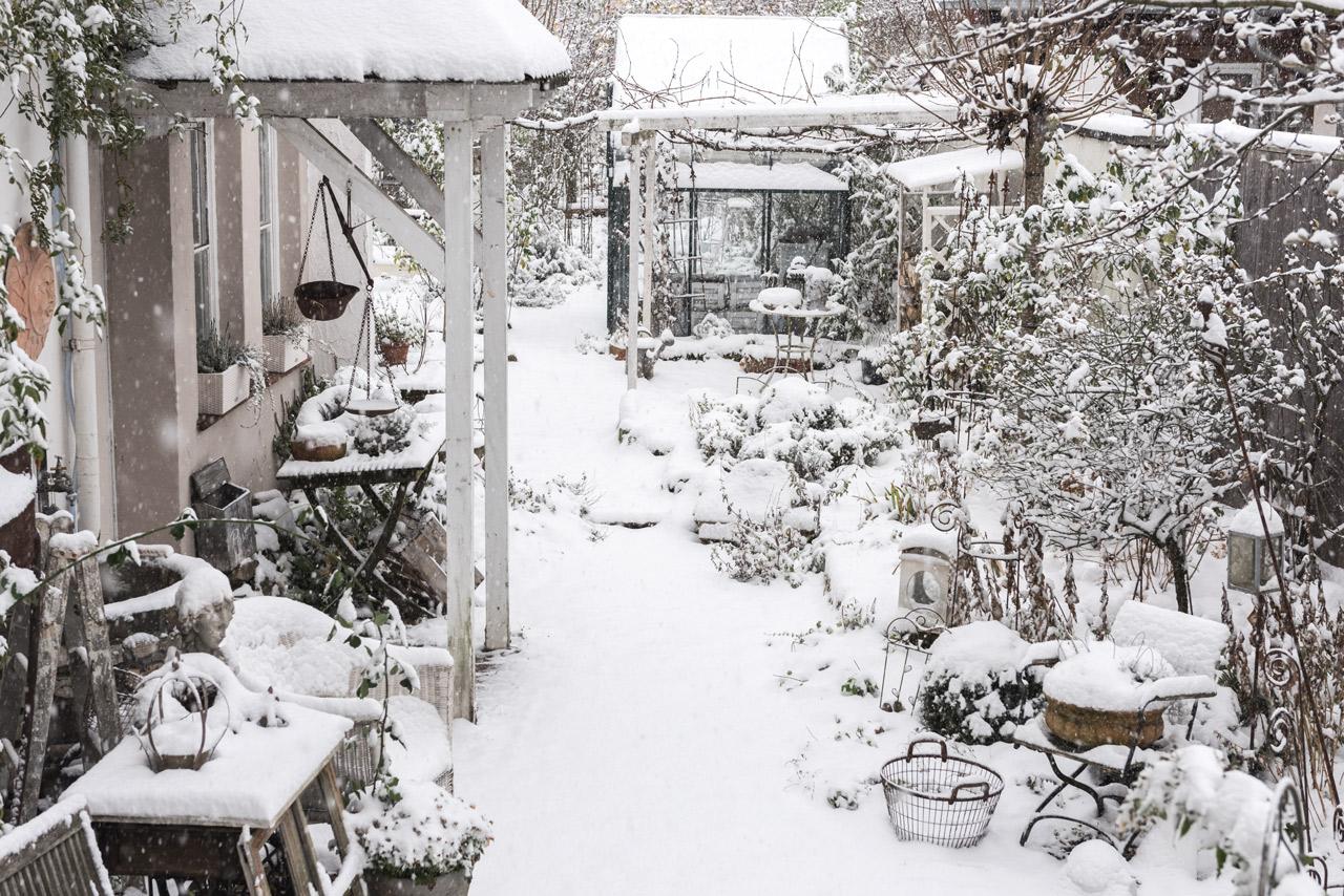Blick in Garten im Schnee