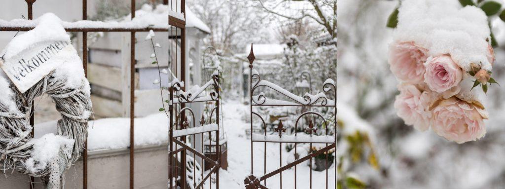 Garten im Winter bei Schnee