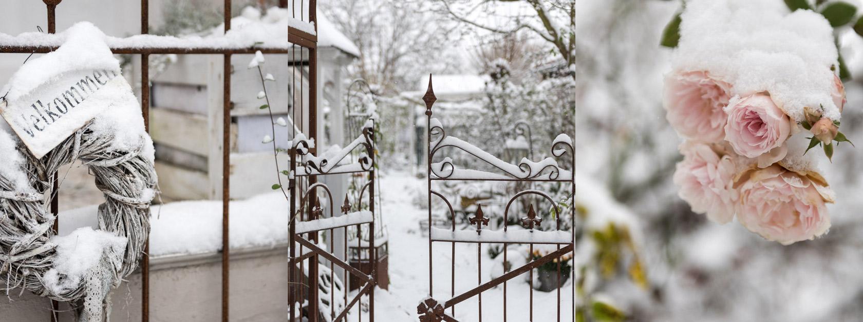 Mein Garten Im Winter Gaaanz Viel Schnee In Gundis Garden