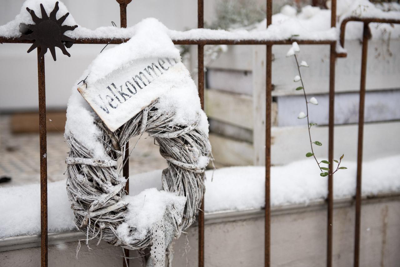 Schnee im winterlichen Garten