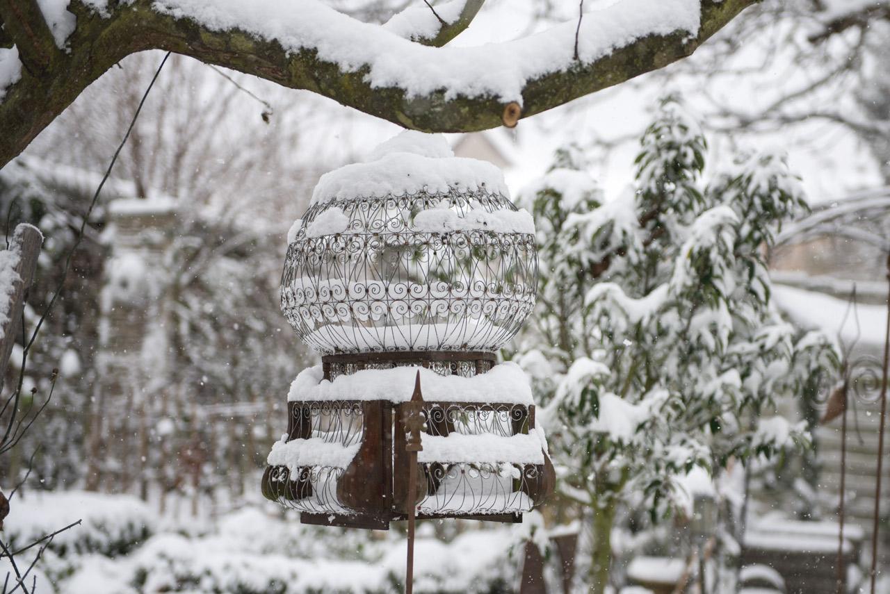 Garten im Winter - Impressionen auf meinem Gartenblog