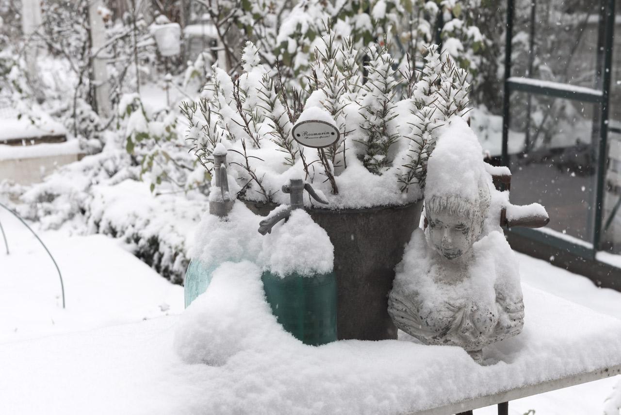 Garten bei Schnee